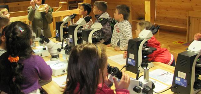 Przedszkolaki w Centrum Pachnicy Dębowej